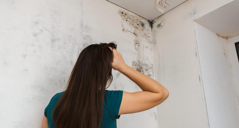La muffa in casa può provocare problemi respiratori?